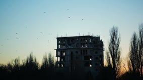 Uno stormo dei corvi che sorvolano le rovine della costruzione dusk Tramonto stock footage