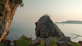 Uno stormo della grande roccia sul circondando degli uccelli si avvicina al mare con una barca stock footage