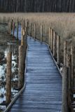 Unobstructed nature trail in Helsinki, Finland. Royalty Free Stock Photography