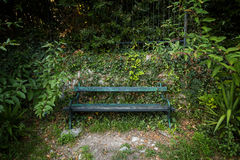 Unoccupied green bench surrounded by plants Stock Photos