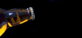 Unopened Beer Royalty Free Stock Image