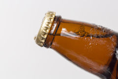 Unopened Beer Bottle royalty free stock images