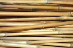 Unordered bamboo texture Stock Image