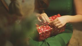 Unpacks Gift Box whith christmas Tree. Girl Unpacks New Year Gift stock video footage