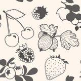 Unpainted berries pattern Royalty Free Stock Images