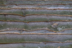 Unpainted boards closeup Royalty Free Stock Photo
