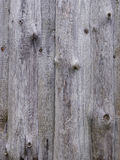 Unpainted unedging boards. A grey wooden wall of a shed Royalty Free Stock Photography