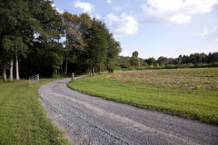 Unpaved country road and pasture Royalty Free Stock Photo
