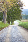 Unpaved country road and pasture Royalty Free Stock Photos