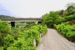 Unpaved countryroad in fruit trees under highway bridge on cloud Stock Image