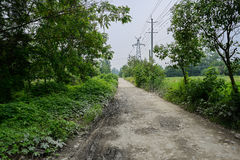 Unpaved countryroad in sunny summer Stock Photography