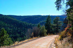 Unpaved Dirt Mountain Road on the Edge of a Cliff in a Pine Tree Royalty Free Stock Photography