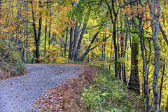 Unpaved Fall road with colorful trees stock images