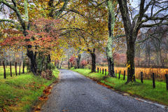 Unpaved Fall Road With Colorful Trees Stock Photo
