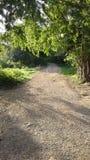 Unpaved grusväg i mitt av ingenstans Arkivbilder