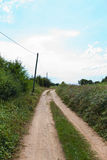 Unpaved road amidst plants Royalty Free Stock Photos