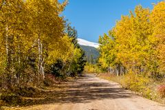 Unpaved road at autumn sunny day Stock Images