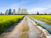 Unpaved Road to the city Royalty Free Stock Photo