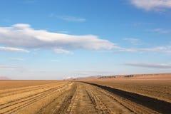 Unpaved väg i altiplanoen, Bolivia Arkivfoto