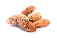 Unpeeled almond isolated Stock Images