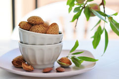 Unpeeled almonds Royalty Free Stock Photography