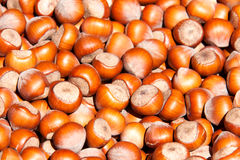 Unpeeled hazelnuts as a background close up stock photos