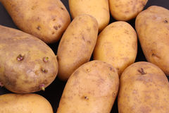 Unpeeled Potato. Es to be used as a background Stock Images
