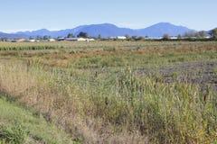 Unplanted Farm Land Stock Photo