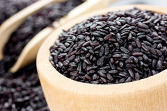 Unpolished black rice in a wooden bowl Royalty Free Stock Images