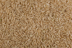 Unpolished brown rice texture background Royalty Free Stock Photo