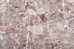 Unpolished marmurowa tekstura Obraz Royalty Free