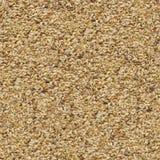 Unpolished Rice Background. Seamless Texture. Stock Image