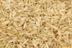 Unpolished rice (whole grain). Background of unpolished rice (whole grain royalty free stock photos