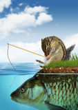 Unpredictable result concept, surreal chipmunk fishing on fish. Unpredictable result concept, chipmunk fishing on fish Stock Image