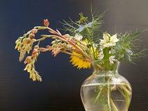 Unpretentious natural bouquet. Unpretentious  bouquet with natural flowers Royalty Free Stock Images
