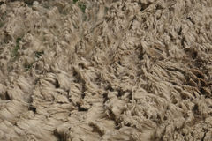 Raw wool texture Royalty Free Stock Photos