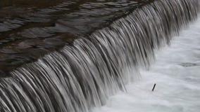 Unquiet water - plane. In landscape stock video footage