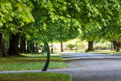 Unravelling fern, one of New Zealand symbols. Stock Photos