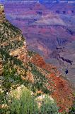 Unreal colors in the Grand Canyon National Park. Yellow and brown rocks with green vegetation in the foreground. Red, purple and pink rocks in the background Stock Photography