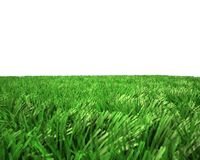 Unreal green grass Stock Photos