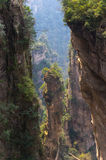 Unreal mountain peak in China. National park Stock Image