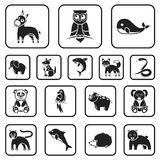 An unrealistic animal black icons in set collection for design. Toy animals vector symbol stock web illustration. An unrealistic animal black icons in set Stock Images