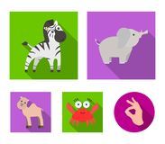 An unrealistic flat animal icons in set collection for design. Toy animals vector symbol stock web illustration. An unrealistic flat animal icons in set Royalty Free Stock Photography