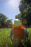 Unrecognisable man relaxing in folding chair in woodland clearing on sunny day, rear view (lens flare) Stock Photos