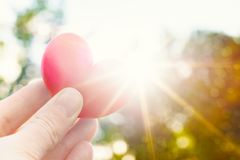 Person holding heart shaped plum against the sun. Love concept lifestyle image with sun flare. Valentine`s day background. Unrecognisable person holding heart royalty free stock photo