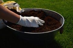 Unrecognisable vrouwelijke tuinman die mooie bloem klaar houden om in een tuin worden geplant stock afbeeldingen
