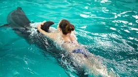 Unrecognizable νέα γυναίκα που κολυμπά με το δελφίνι, που εκπαιδεύει στο μπλε νερό λιμνών κρυστάλλου κίνηση αργή Φύση, ζώο, άγριο απόθεμα βίντεο