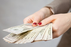 Unrecognizable businesswoman holding dollars. Neutral background Stock Photos
