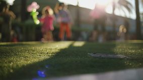 Unrecognizable family playing at park with balloons on beautiful day stock footage