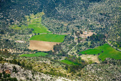 Unrecognizable farm in Majorca Royalty Free Stock Image